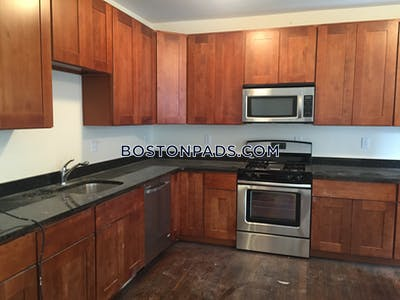 Allston/brighton Border Apartment for rent 4 Bedrooms 2 Baths Boston - $5,000