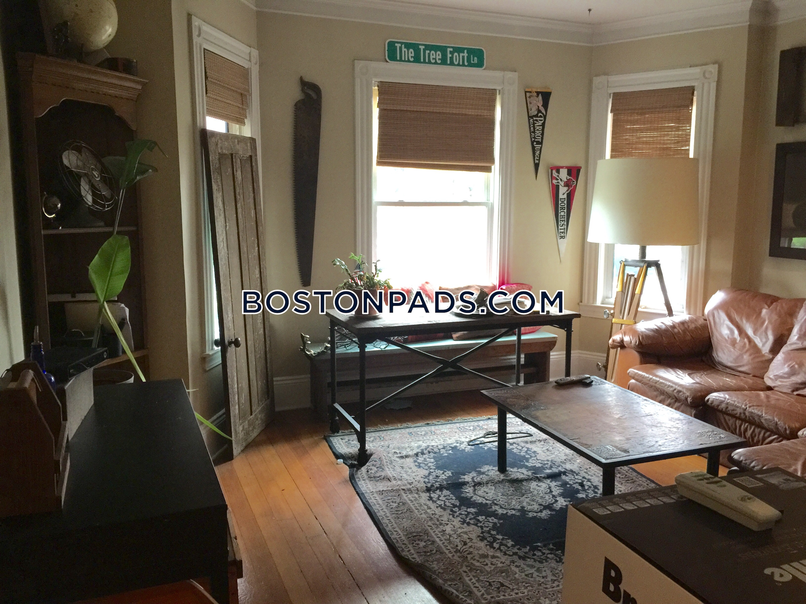 Single listing dorchester south boston border apartment - Boston 1 bedroom apartments for sale ...