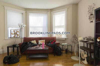 Brookline Apartment for rent 2 Bedrooms 1 Bath  Boston University - $3,250