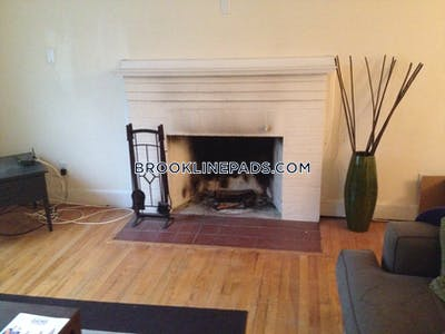 Brookline Apartment for rent 2 Bedrooms 1 Bath  Chestnut Hill - $3,000