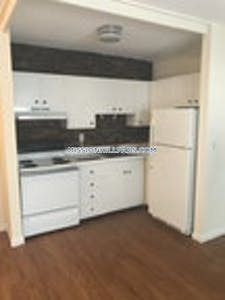 Mission Hill Apartment for rent 1 Bedroom 1 Bath Boston - $1,500