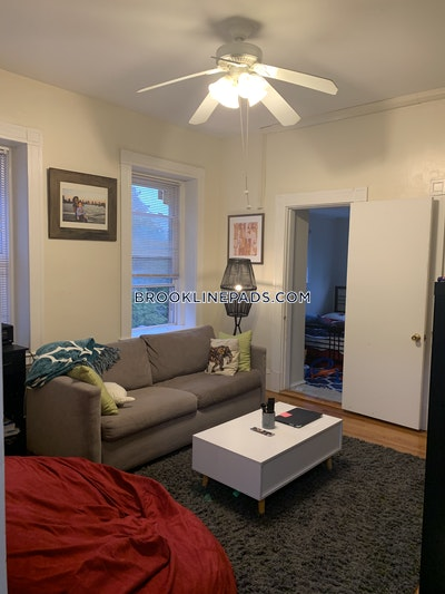 Brookline Apartment for rent 1 Bedroom 1 Bath  Coolidge Corner - $2,500