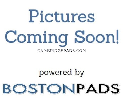 Cambridge Apartment for rent 2 Bedrooms 1 Bath  Harvard Square - $3,095