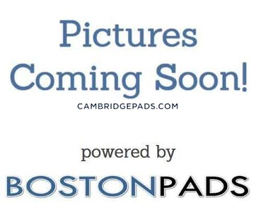 Cambridge Apartment for rent 2 Bedrooms 1.5 Baths  Harvard Square - $3,200